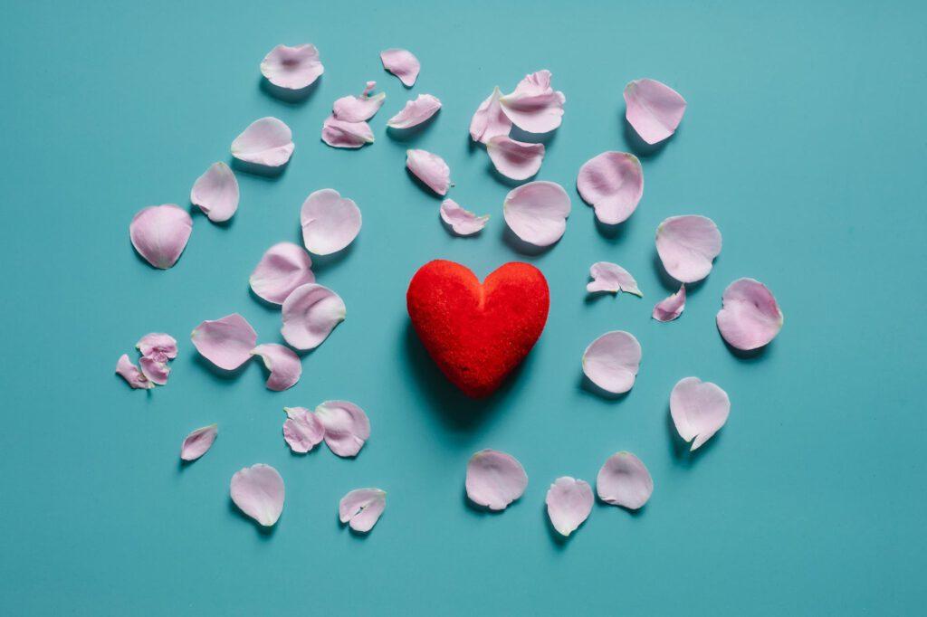 flower petals scattered around decorative heart